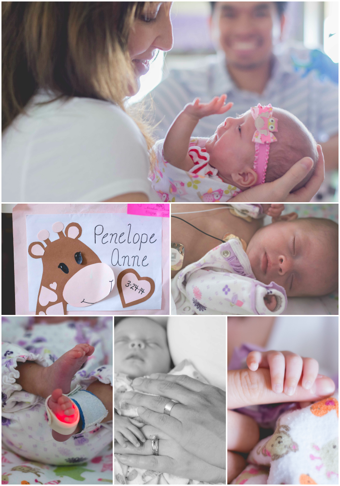 NICU Infant Collage