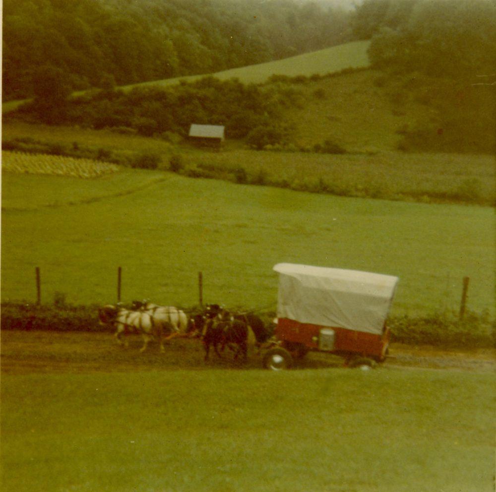wagon and horses on wagon train