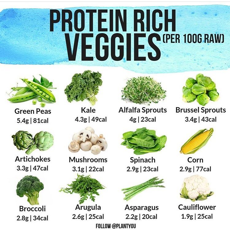 Plant Based Proteins