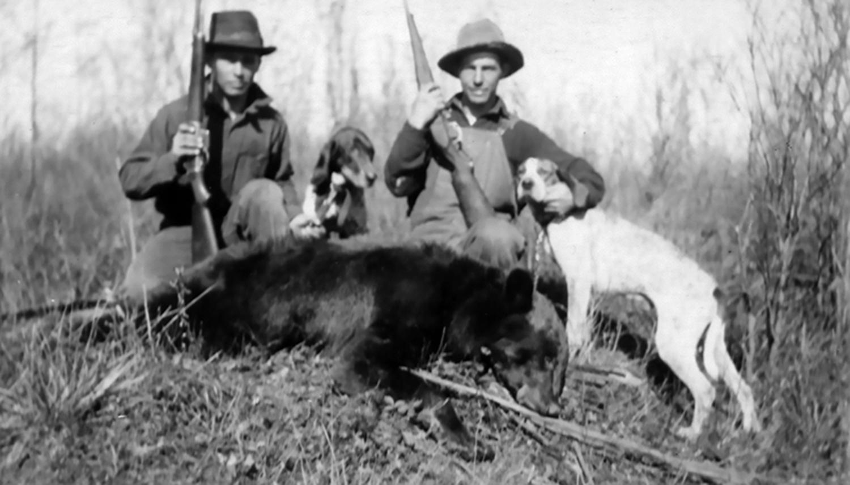1014-hunting-bear-dura