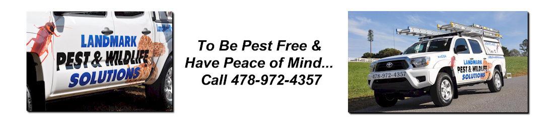 LandMark Pest and Wildlife Solutions