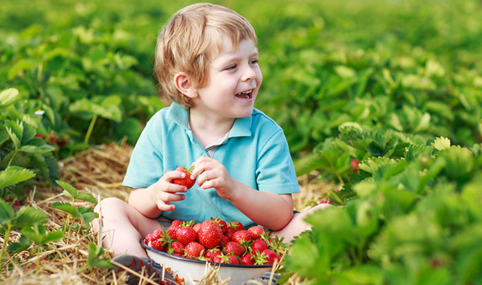 Great Berry Picking Options For Kids Around Oregon