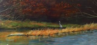 Heron in the marsh