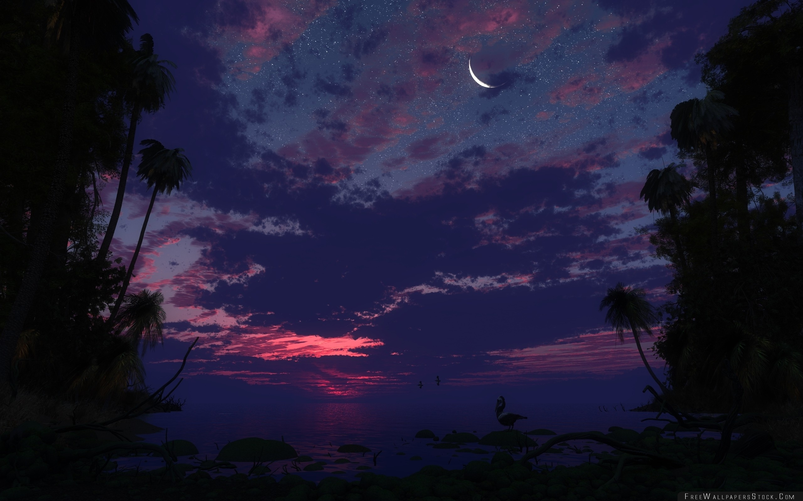 Download Free Wallpaper Palm Trees Sky Night Moon