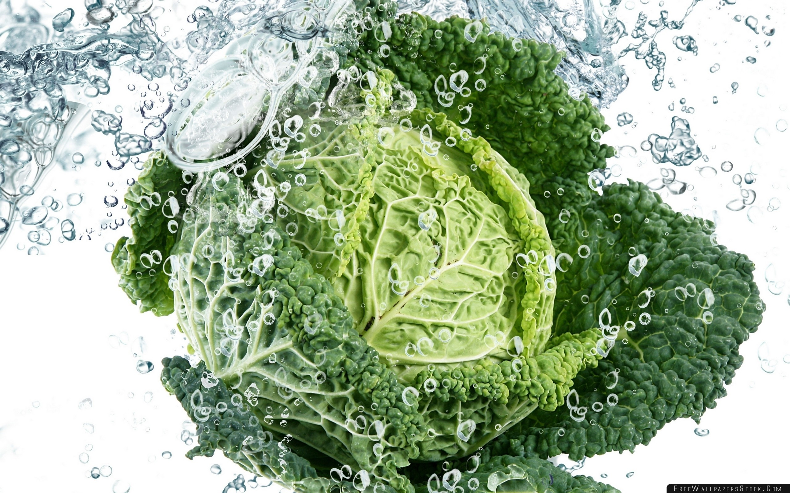 Download Free Wallpaper Vegetable Cabbage Green Leaves Water Spray Drop Freshness