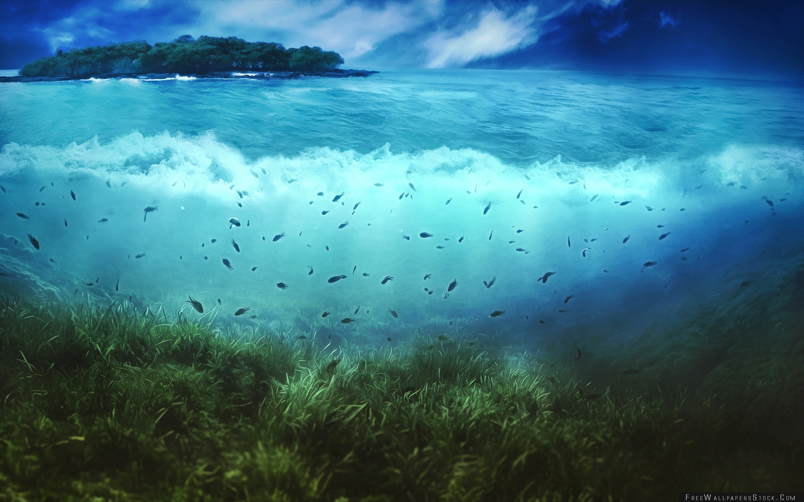 Download Free Wallpaper Water Island Fishes Sea Bottom Vegetation Underwater World Art