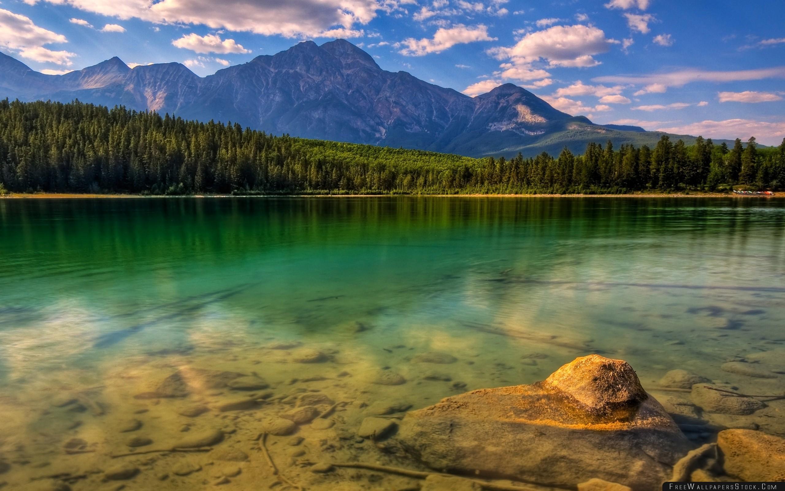 Download Free Wallpaper Wood Trees Coast Lake Bottom Water Transparent Stones Mountains