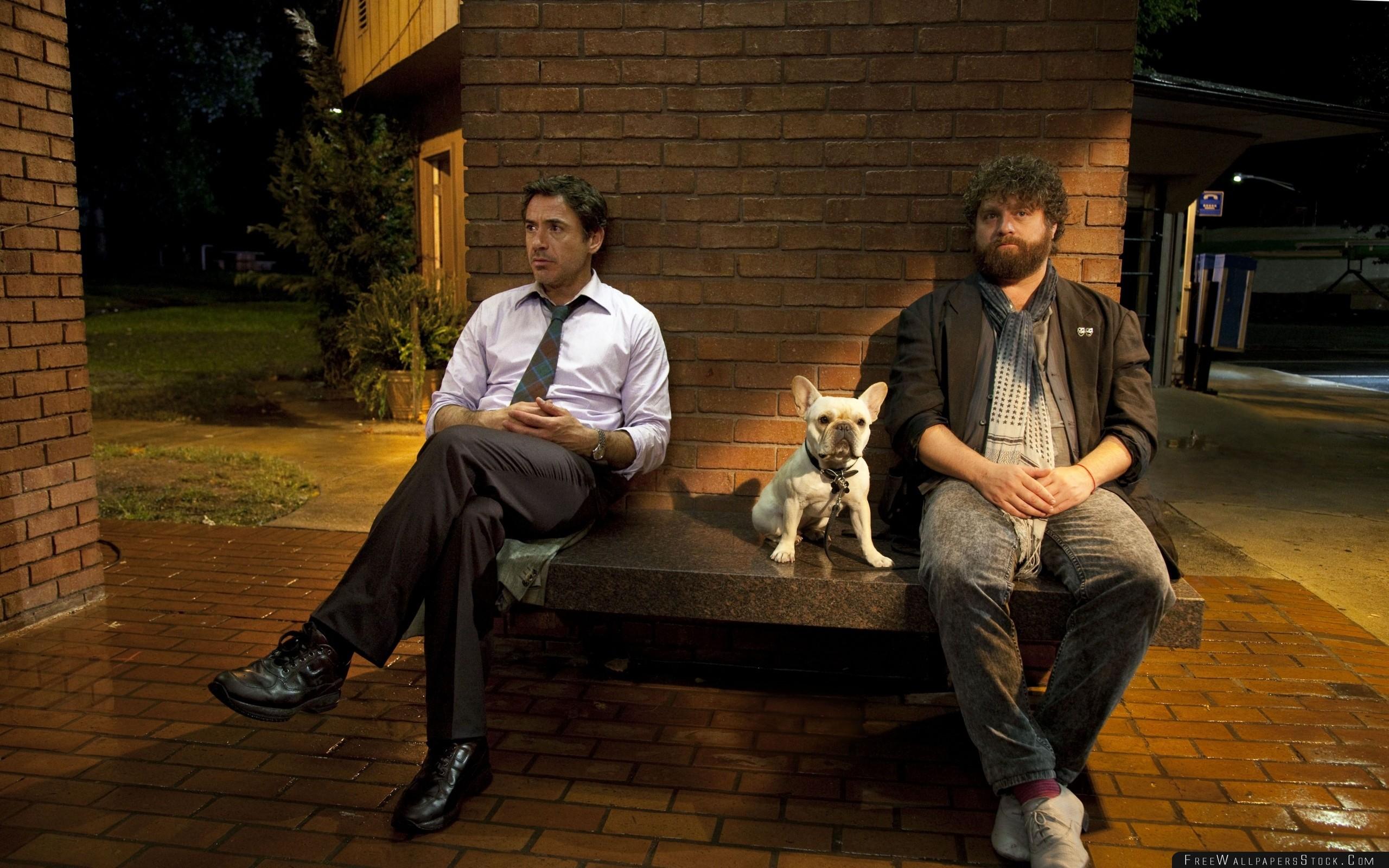 Download Free Wallpaper Zach Galifianakis Robert Downey   Cast Shot Celebrities Shop