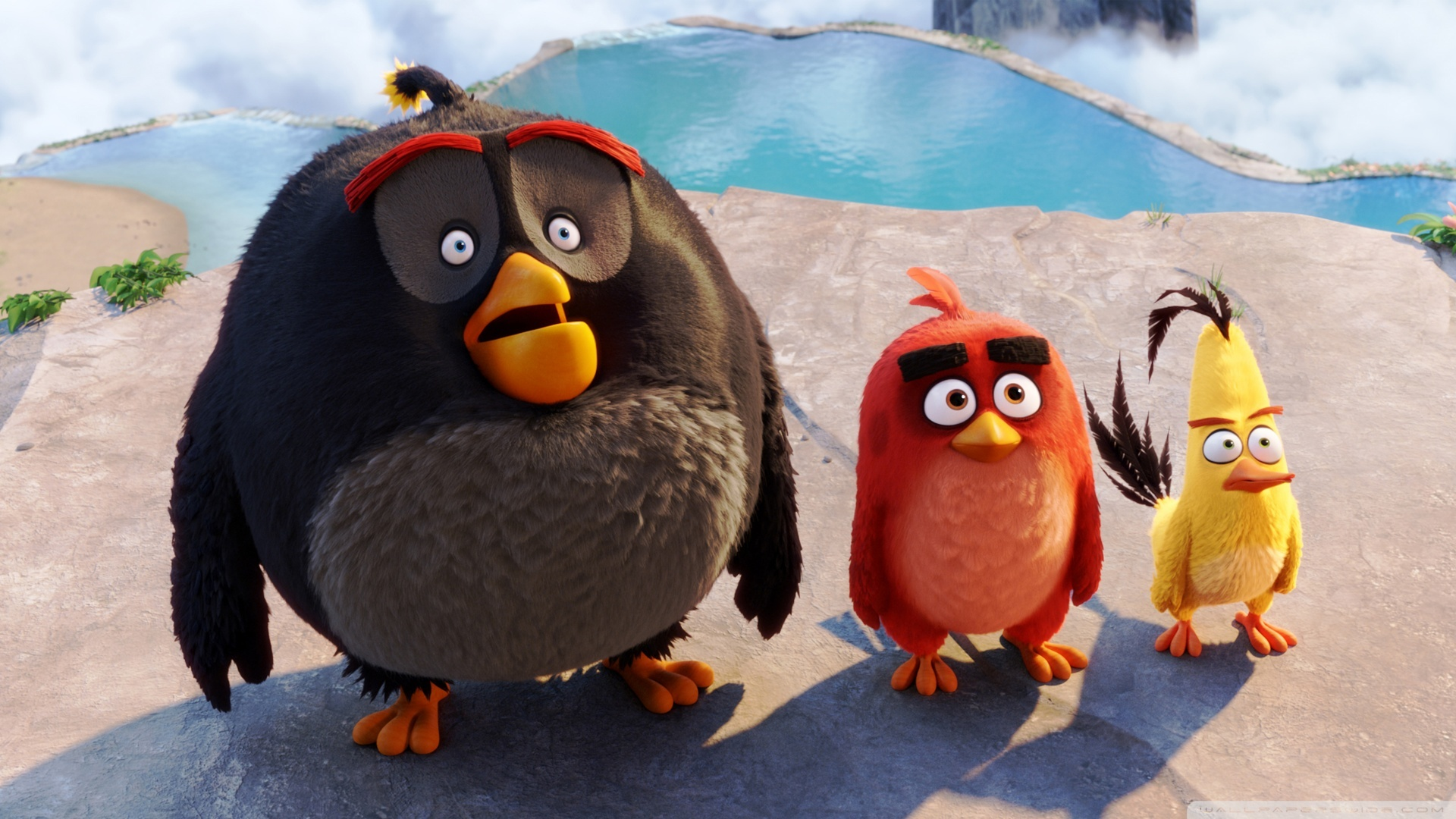 Download Free WallpaperBomb Red Chuck Angry Birds
