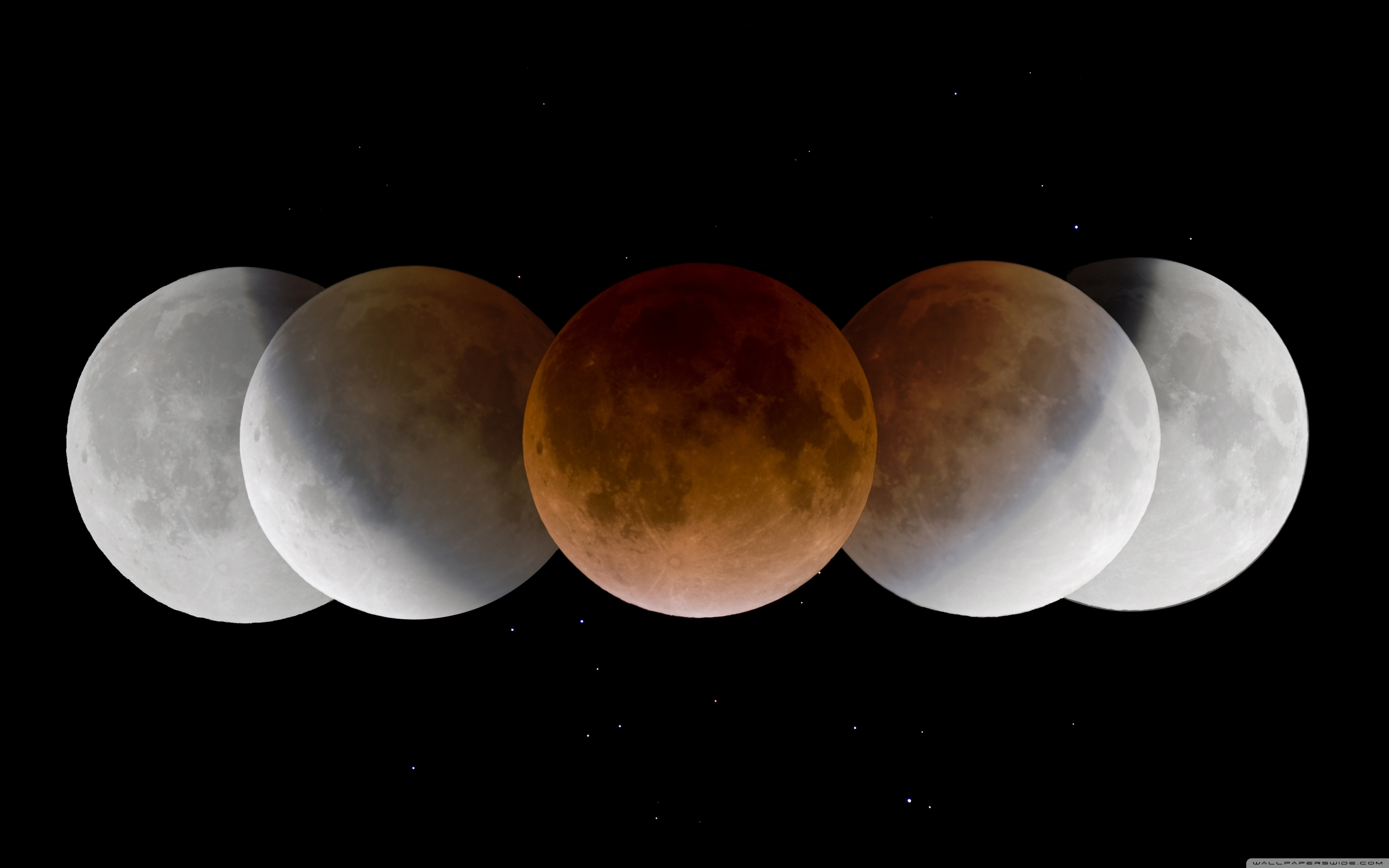 Download Free WallpaperMoon Phases