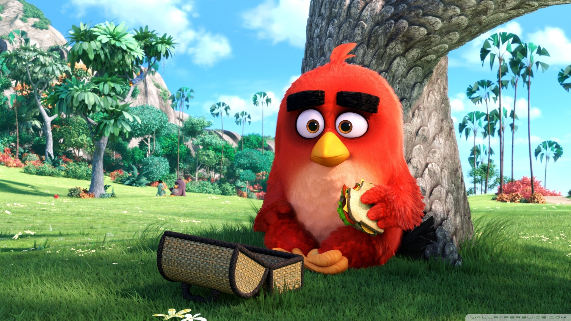 Download Free WallpaperRed Angry Birds Movie