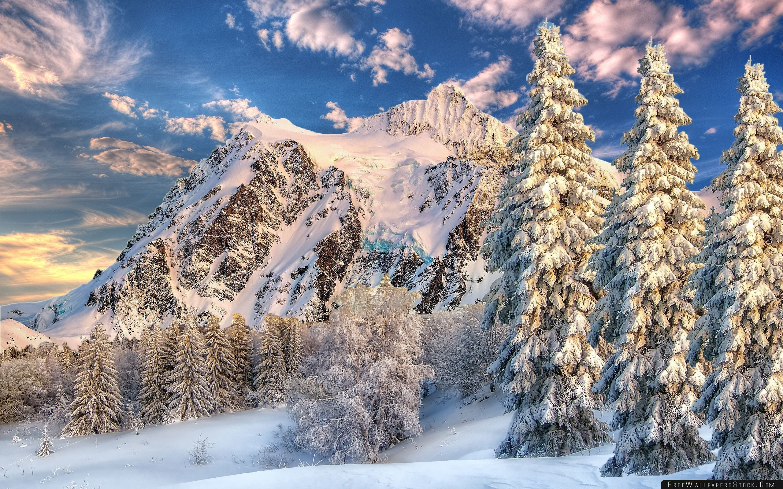 Download Free Wallpaper Mountain Behind Forest Snow   The Ground