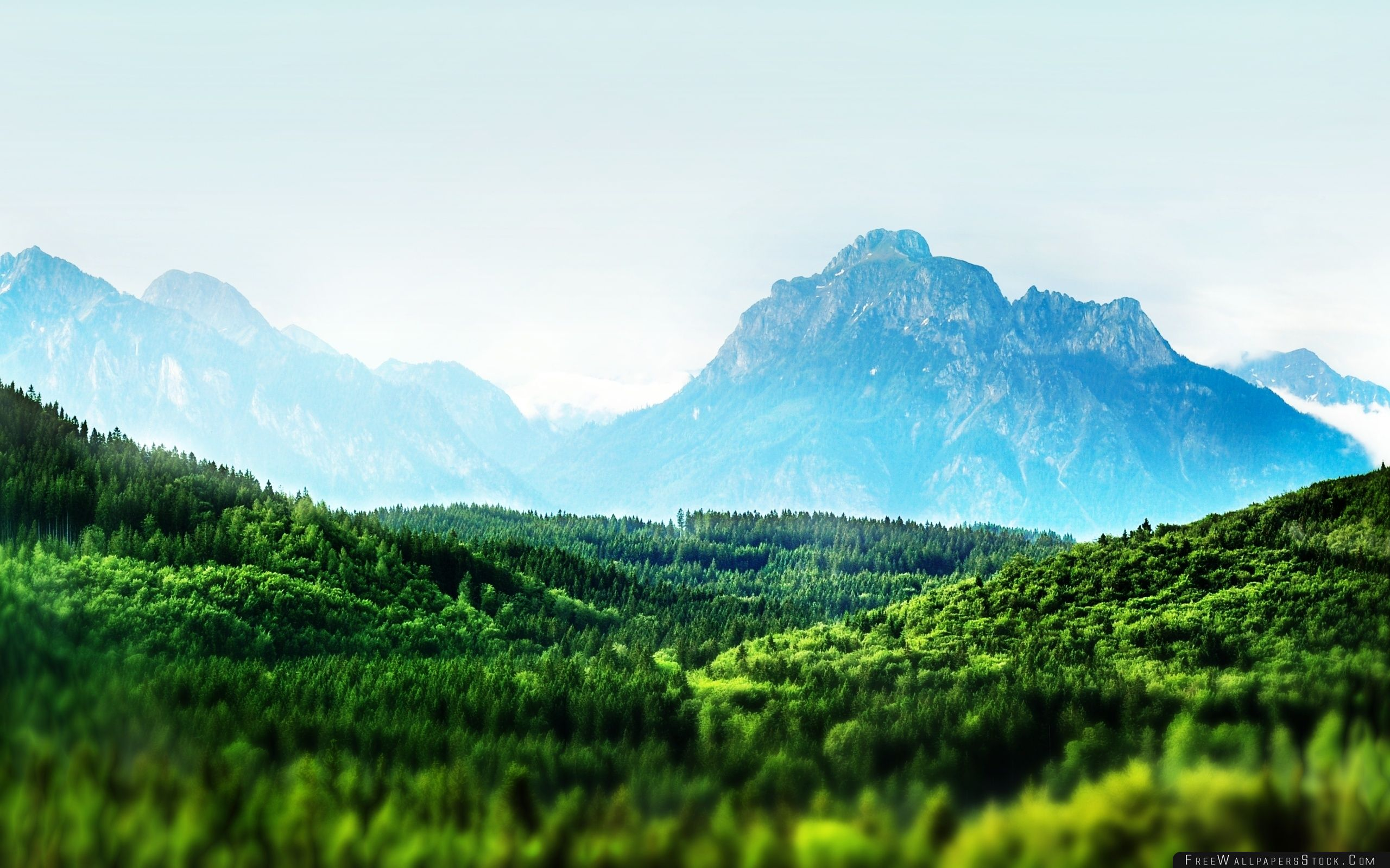 Download Free Wallpaper Mountain Forest Tilt Shift