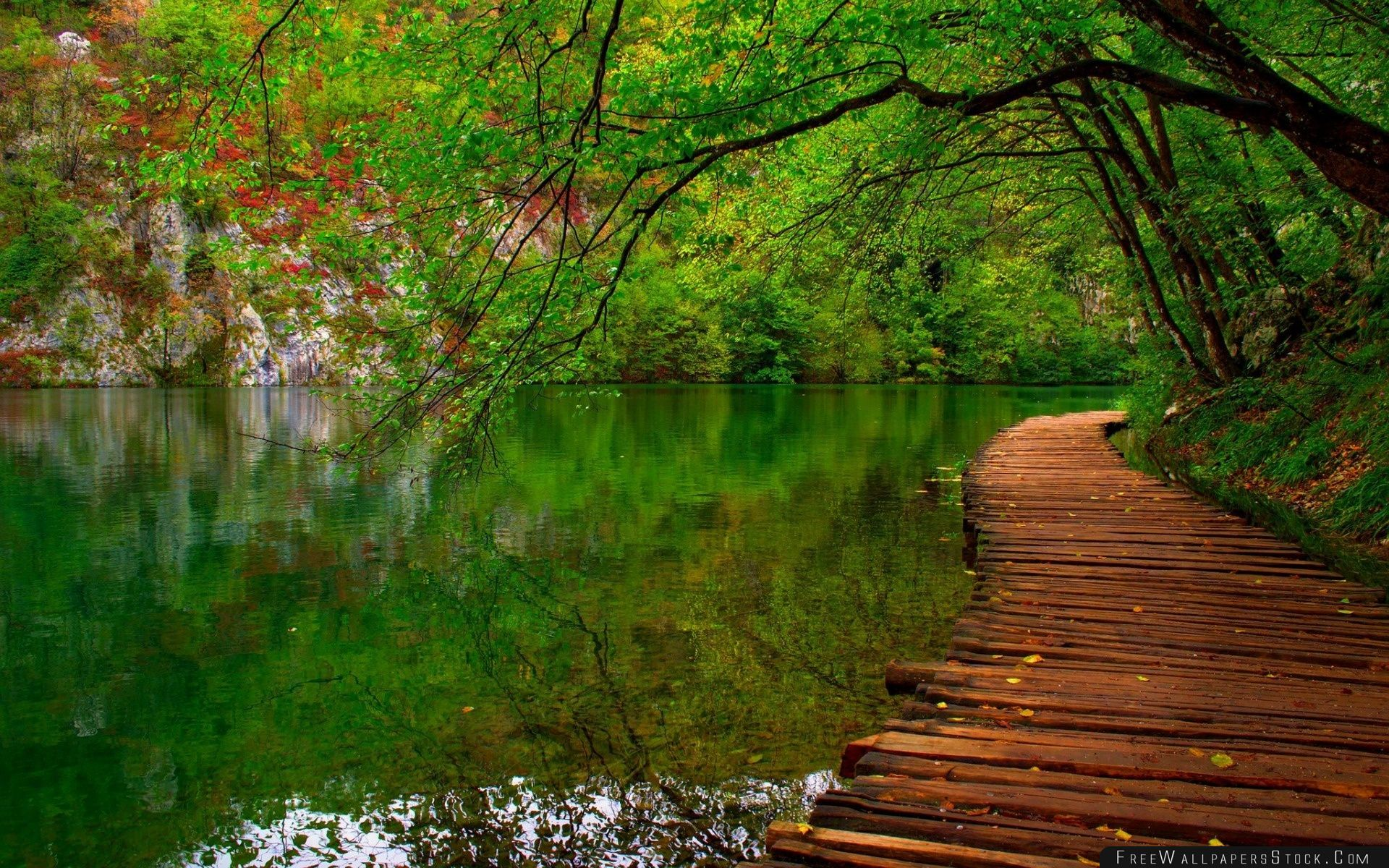 Download Free Wallpaper Nature River Wooden Path