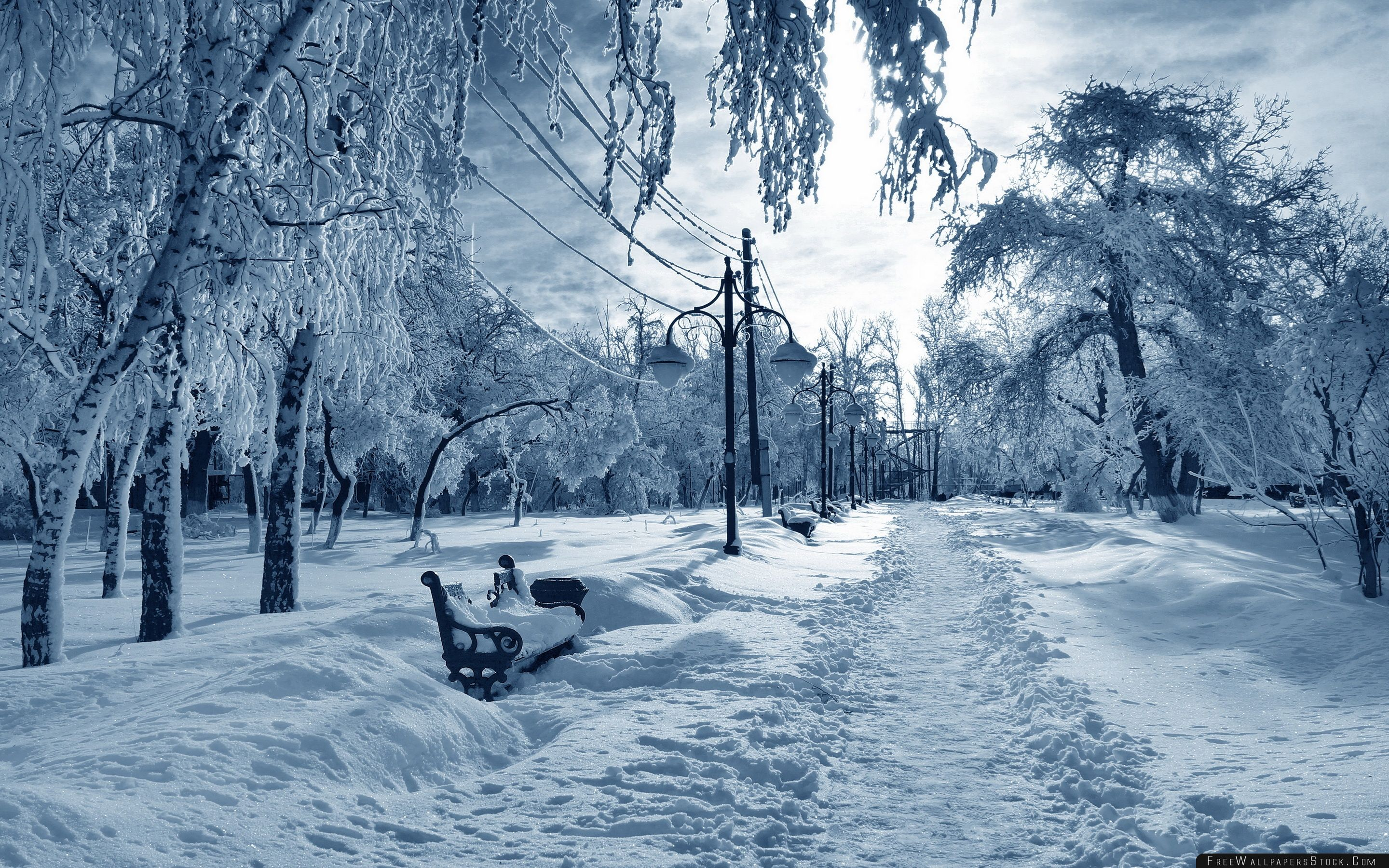 Download Free Wallpaper Park Under Snow Bench