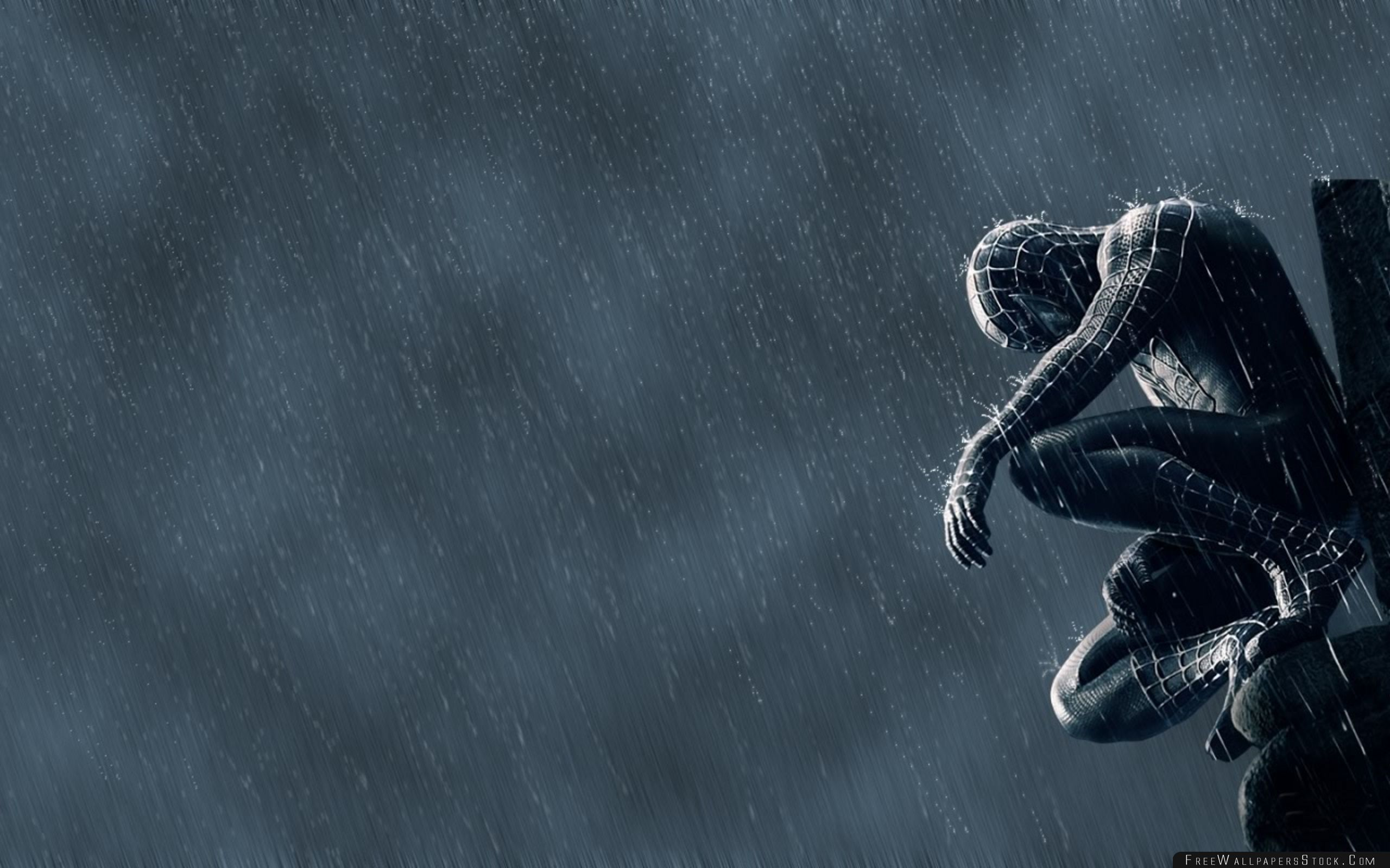 Download Free Wallpaper Spider Man   The Rain