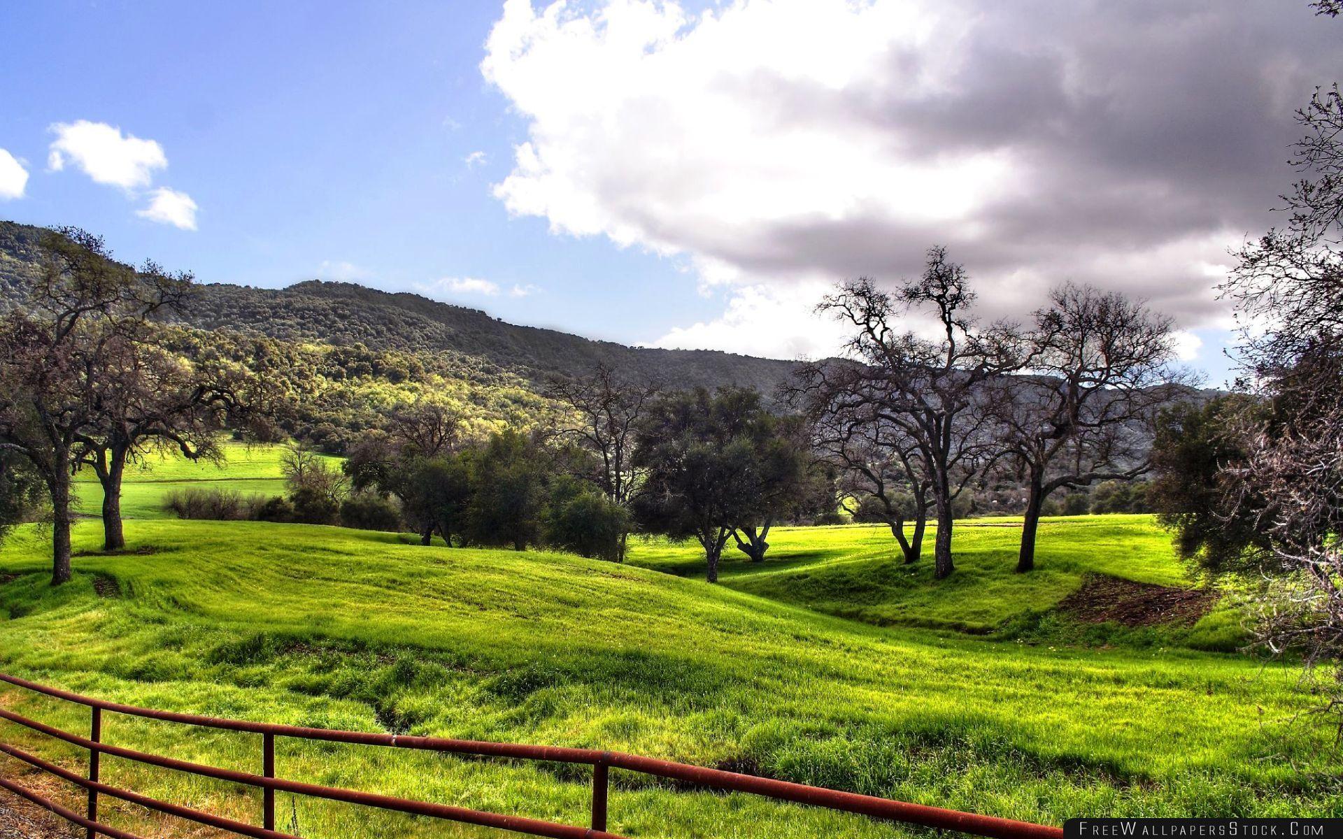 Download Free Wallpaper Spring Landscape Hdr