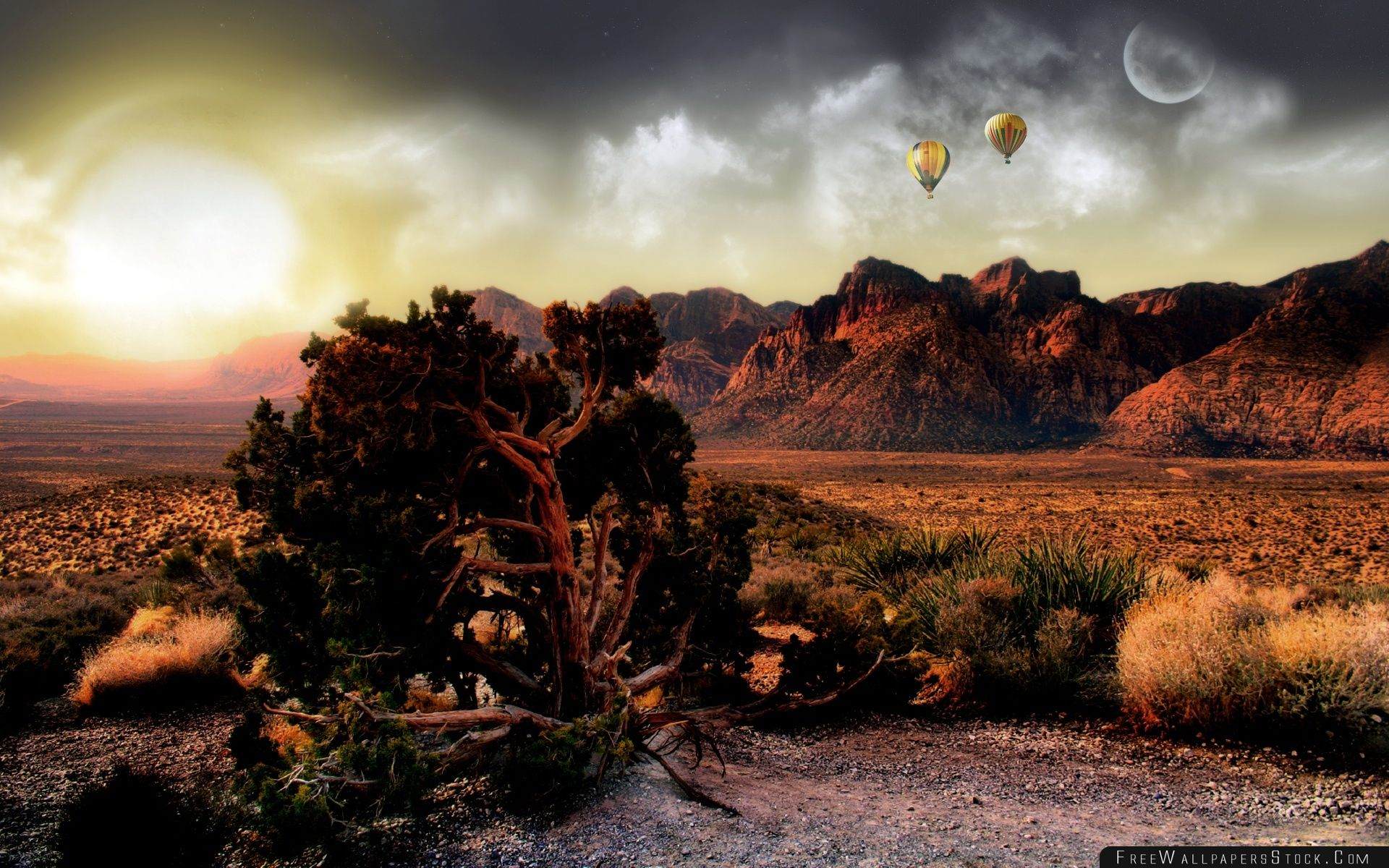 Download Free Wallpaper Sunset   The Desert