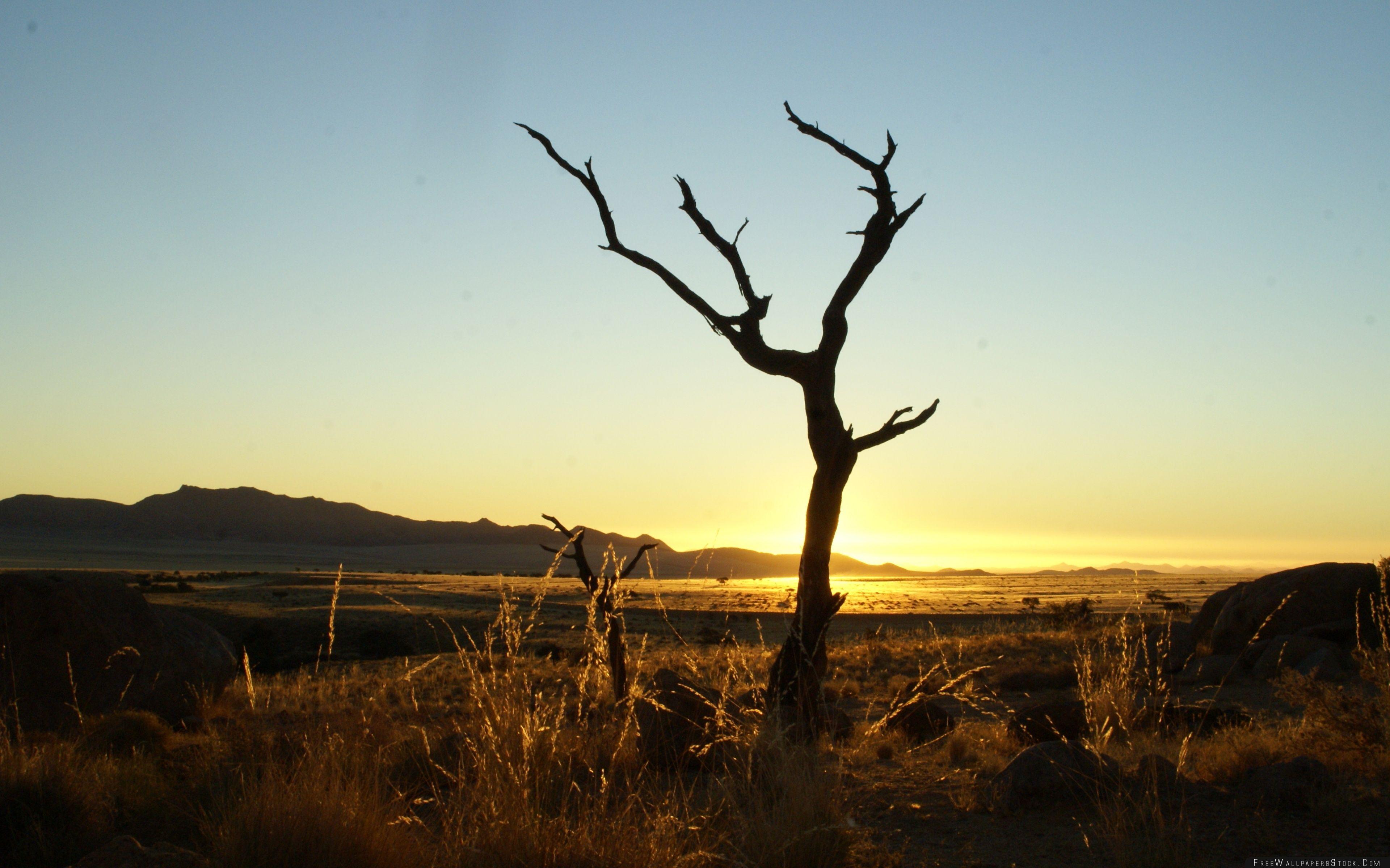 Download Free Wallpaper Sunset Namib Desert