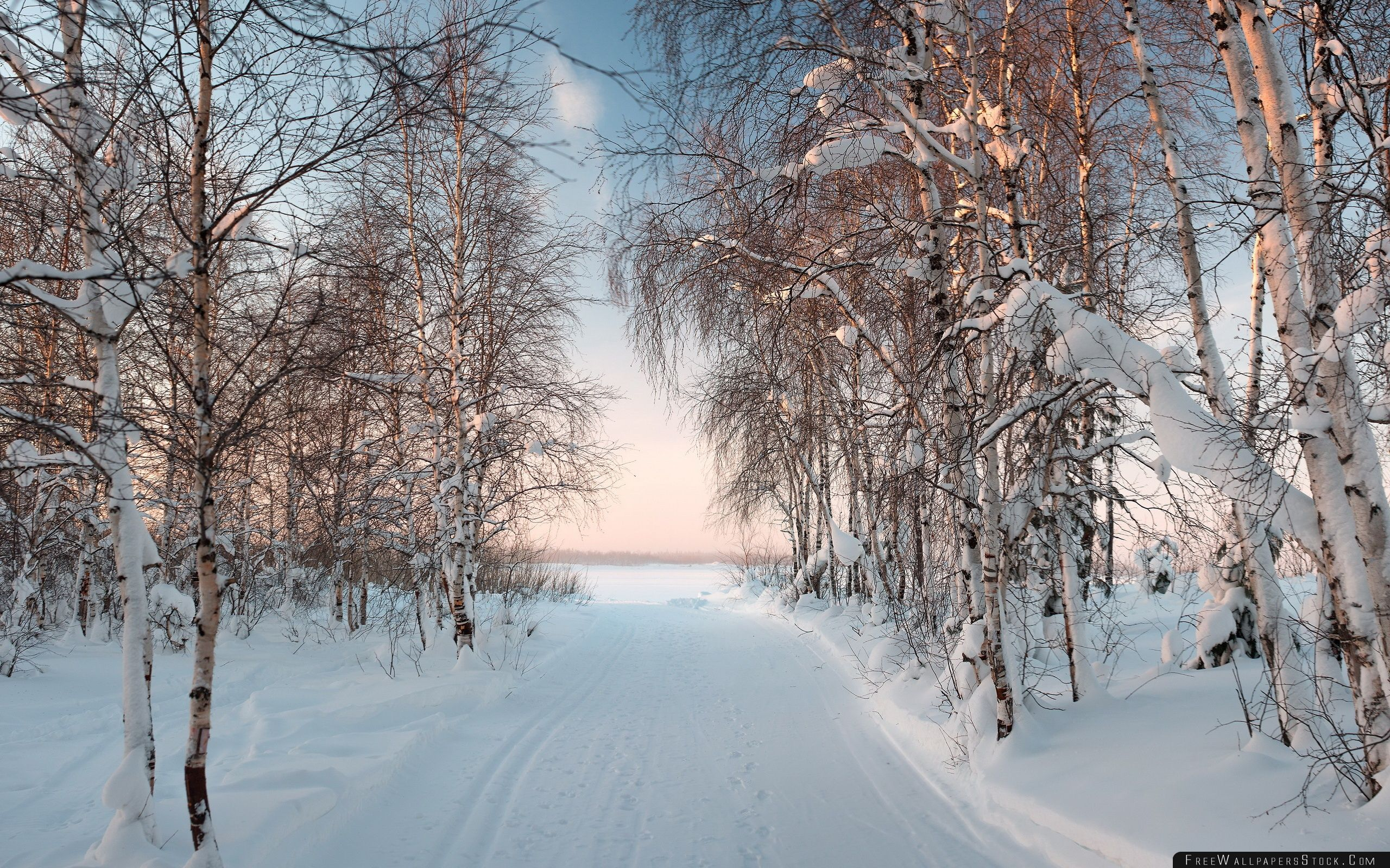 Download Free Wallpaper The Winter   Evening
