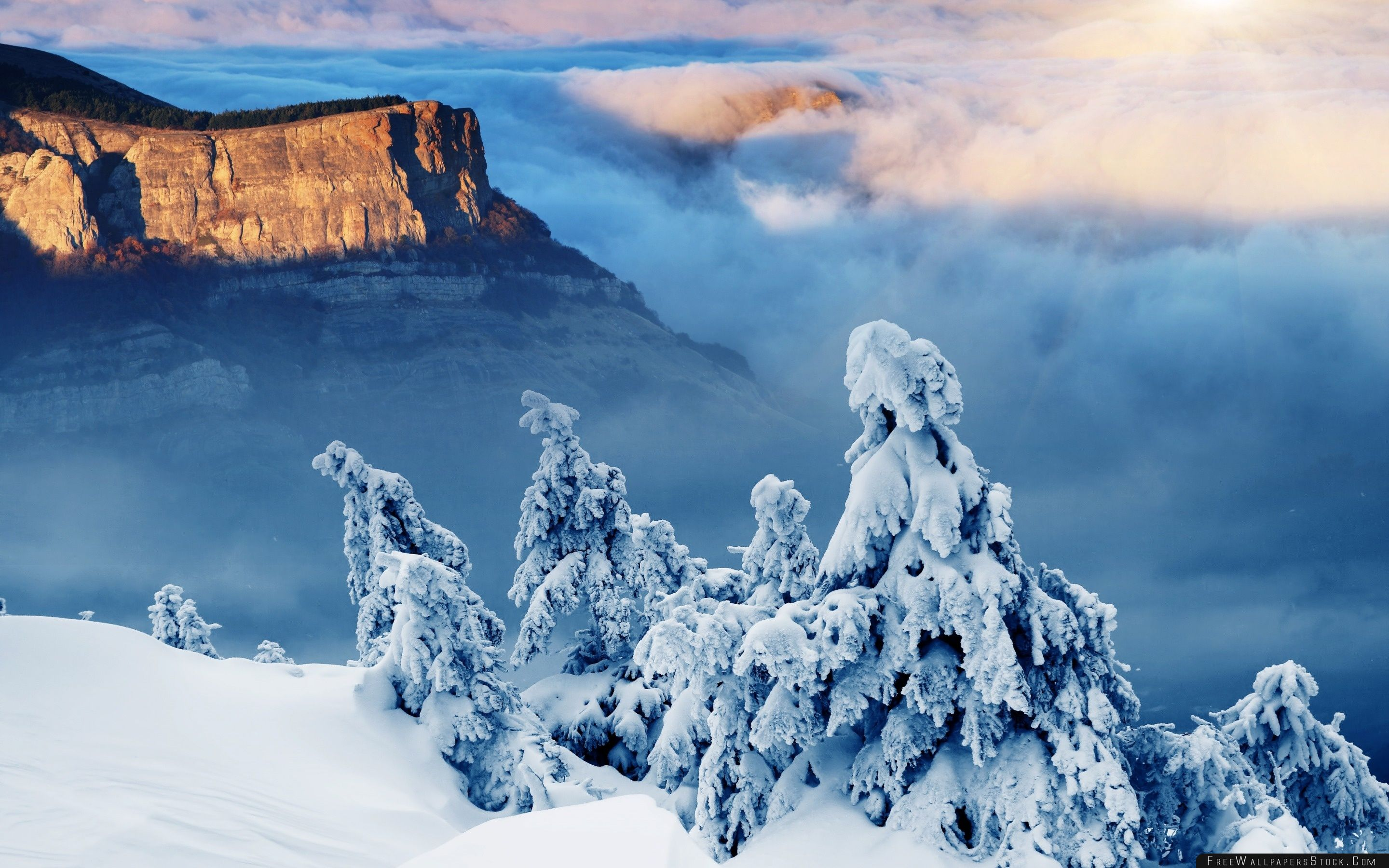 Download Free Wallpaper Trees Under Snow   The Rock