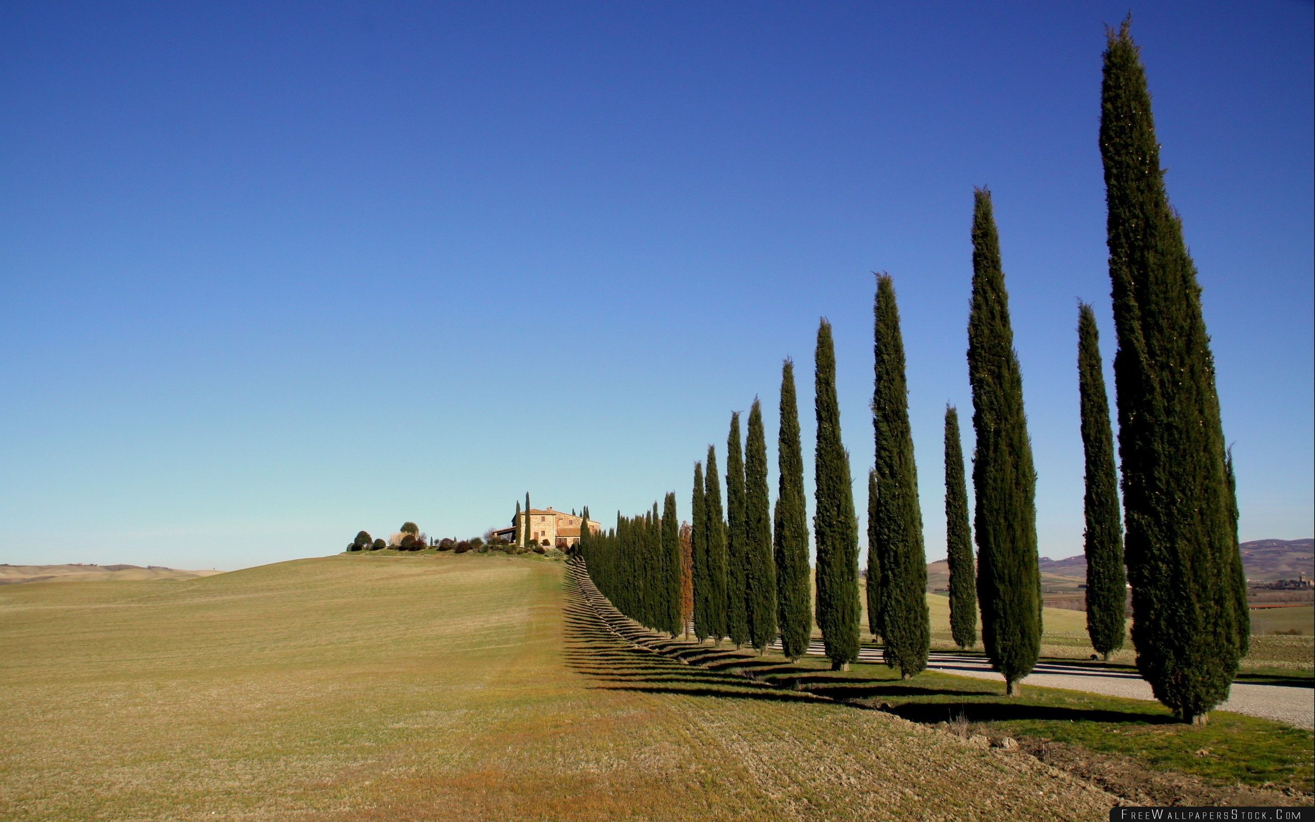 Download Free Wallpaper Tuscany Landscape