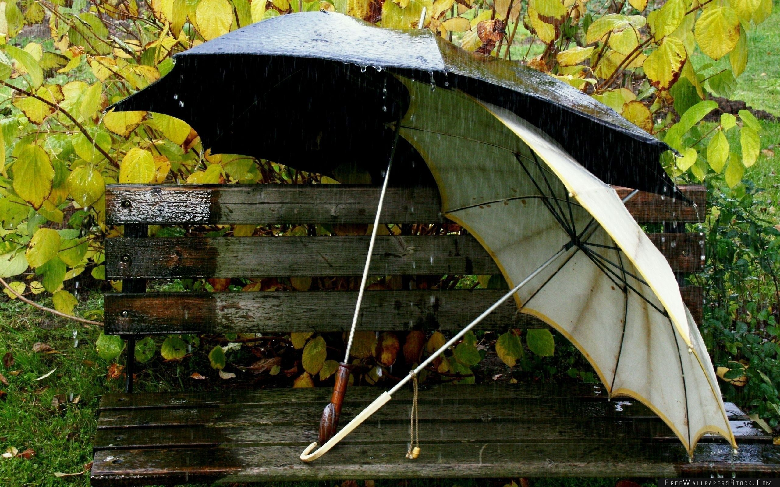 Download Free Wallpaper Umbrellas   The Bench