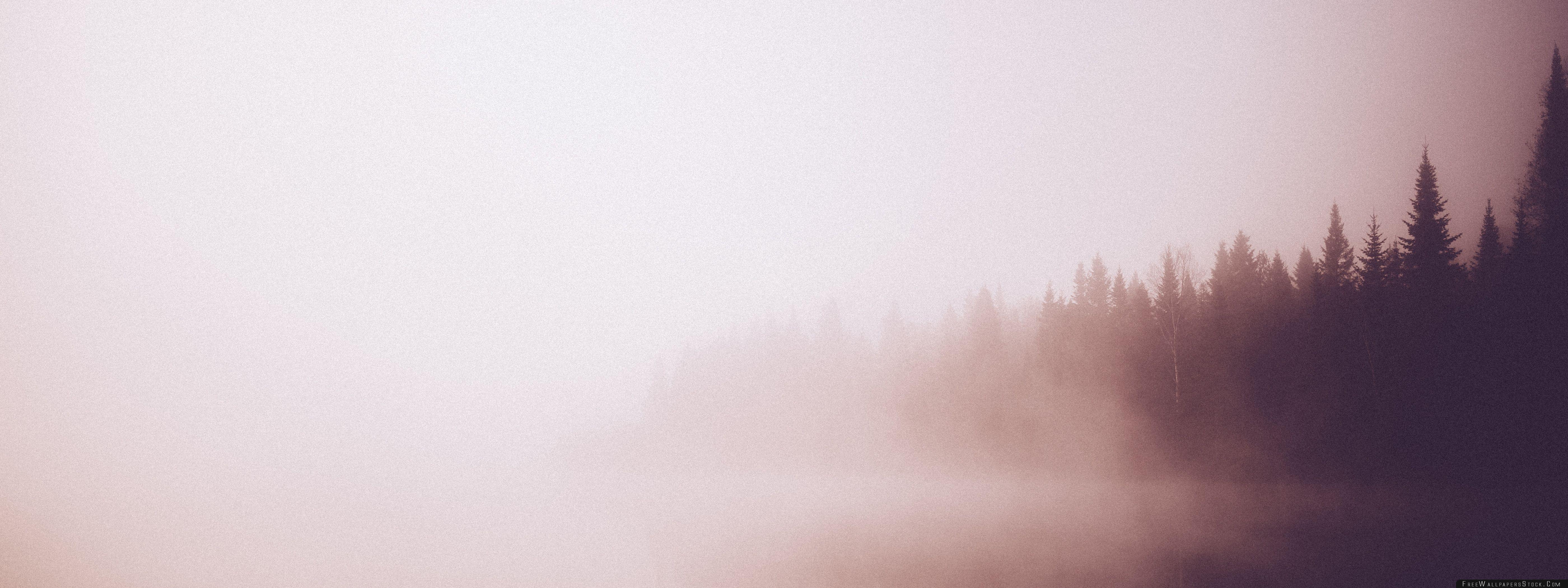 Download Free Wallpaper Vintage Forest   Lake
