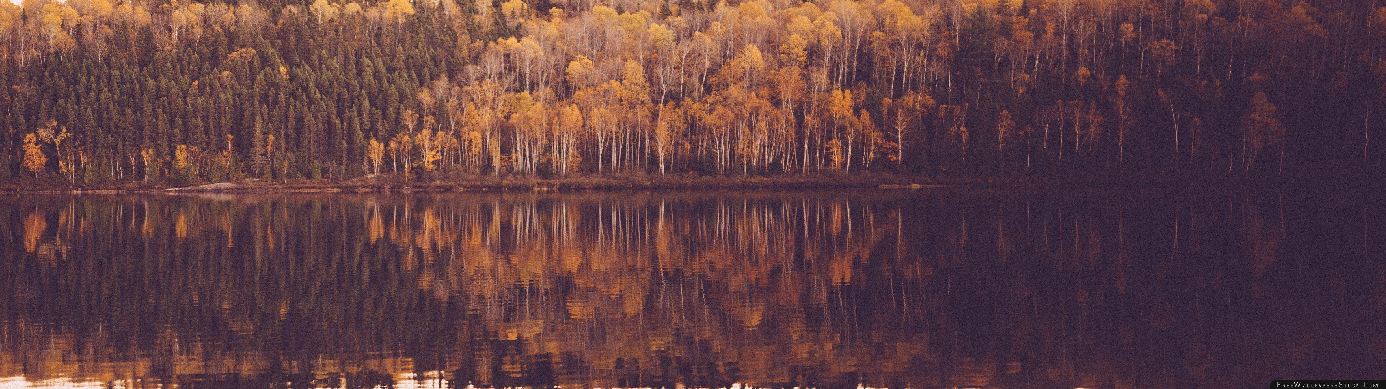 Download Free Wallpaper Vintage Woods