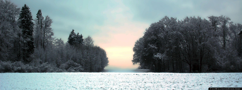 Download Free Wallpaper Winter Glow