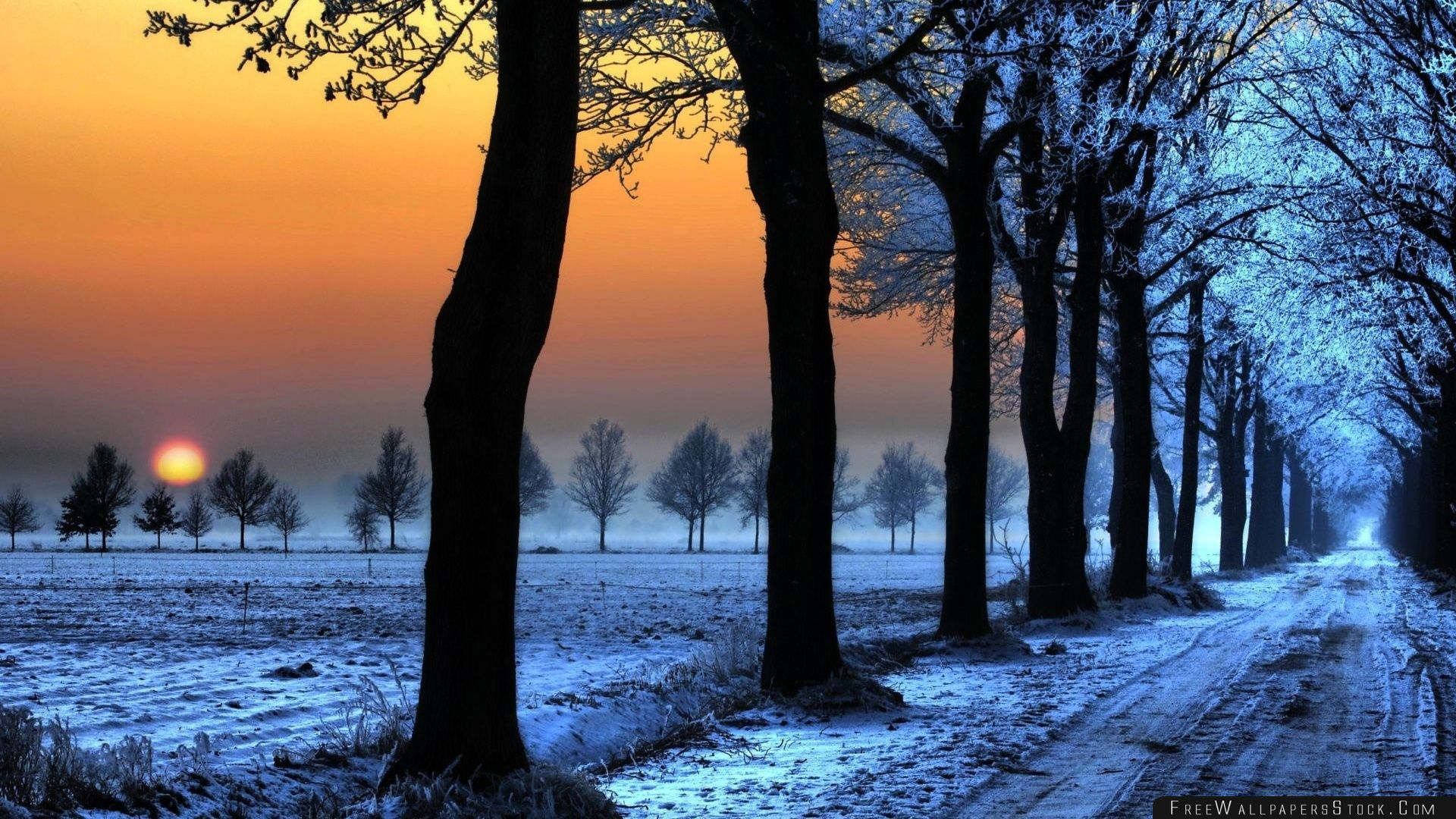 Download Free Wallpaper Winter Landscape With Orange Sky