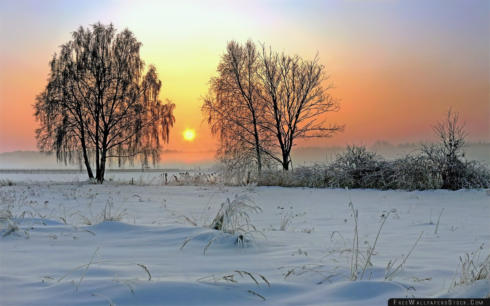 Download Free Wallpaper Winter Sunrise