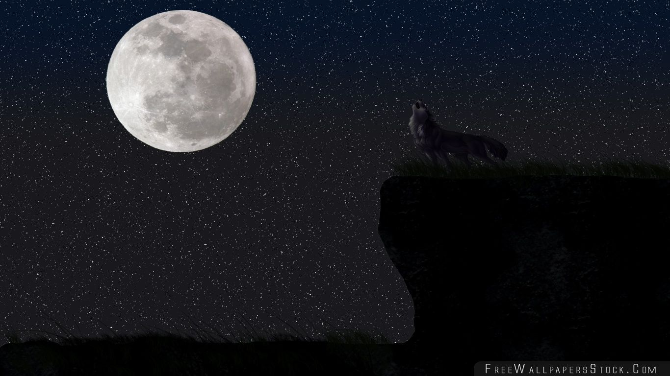 Download Free Wallpaper Wolf And The Full Moon