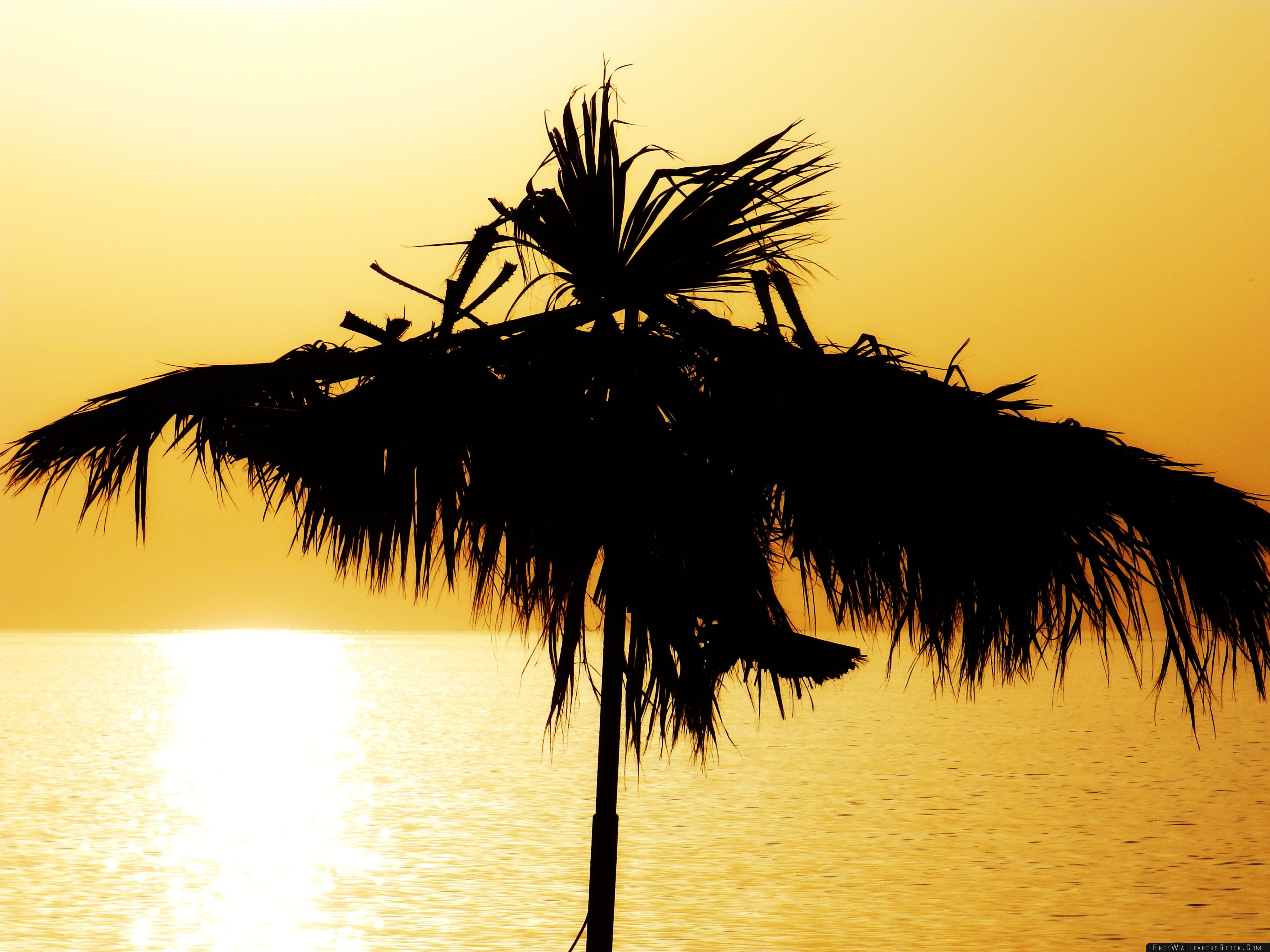 Download Free Wallpaper Yellow Over The Beach