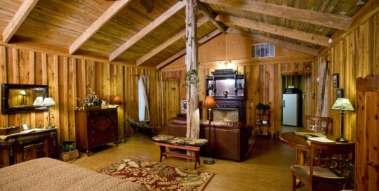 Panther Valley Ranch | Jungle Cabin