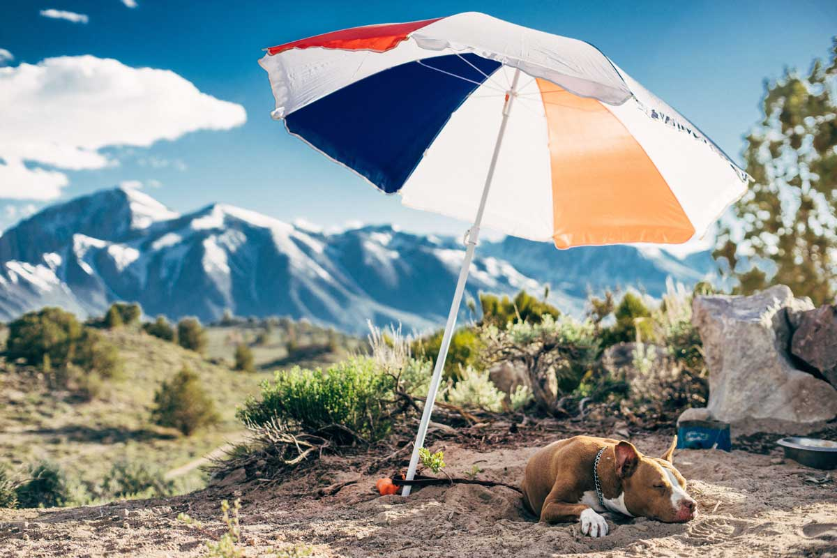 Mindful Living: A More Productive Approach to Being Lazy