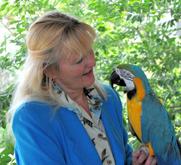 Get holistic natural parrot help