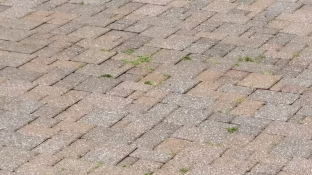 After - Brick Paver Patio Power Washed in North Olmsted