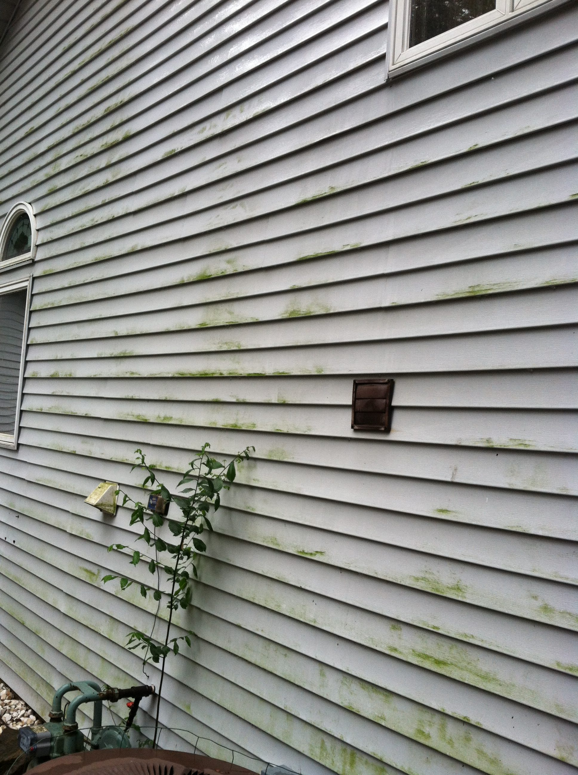 Before - Westlake Home With Mold and Algae on Vinyl Siding