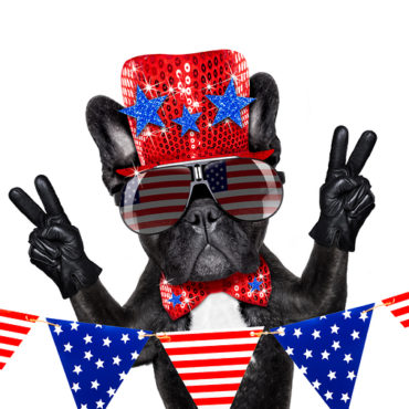 A Patriotic-ish Person's Guide to Celebrating America