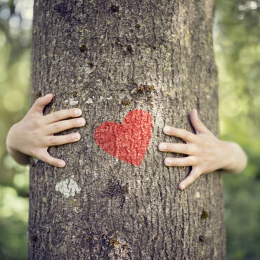 How to Be The Giving Tree with Boundaries