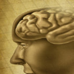 Neuro-Based Approaches
