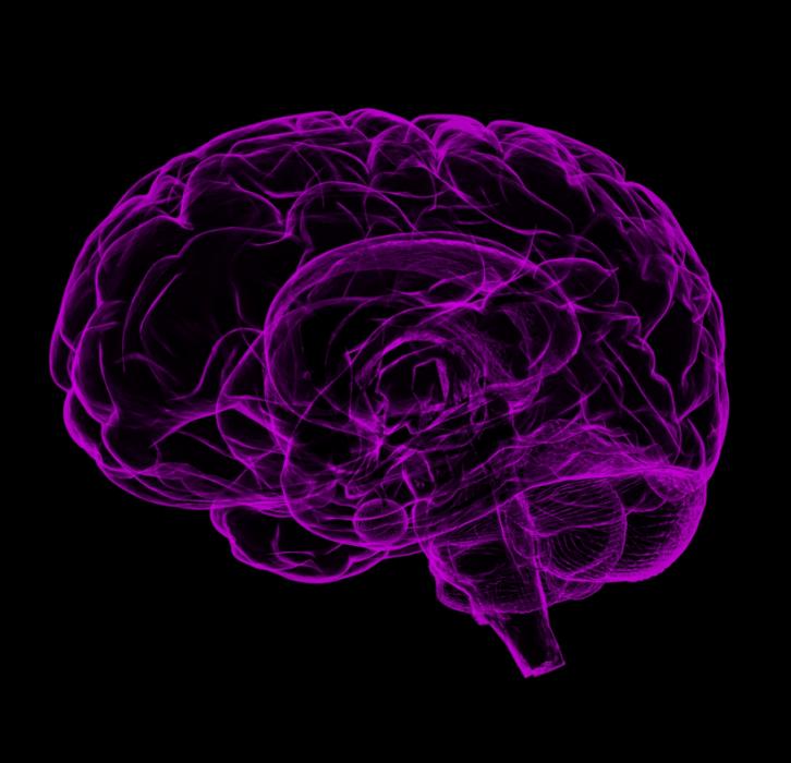 Brain lit up in purple