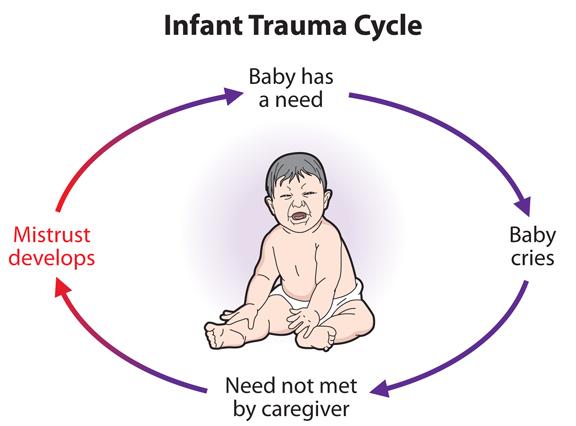 Infant Trauma Cycle