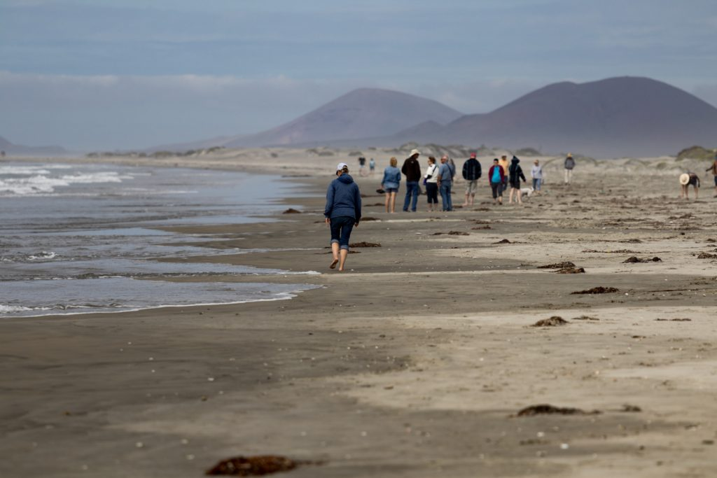 Beachcombers explore the beach at El Pabellon in San Quintin during the 2018 Wine to Whales caravan. Even on overcast days in February, some folks wore shorts and dipped their toes into the surf. Photo by Bob Petitt
