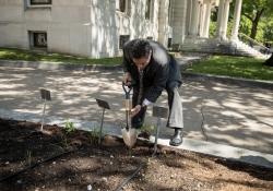 Capitol Hunger Garden  :: May 23, 2018