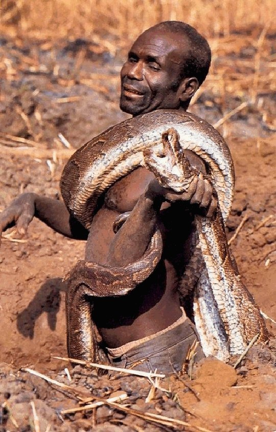 african-man-hunting-for-giant-snake