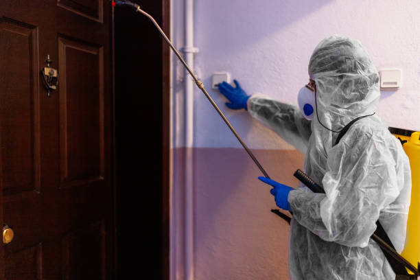 COVID cleaning service - spraying the house , and disinfecting the staircase fence