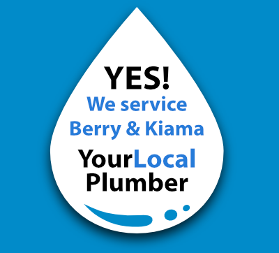 Yes! We are a local Berry plumber.