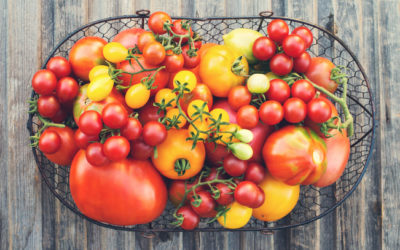 Tomatoes: The ultimate summer vegetable